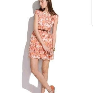 Madewell Watercolor Painted Lacebloom Dress 4